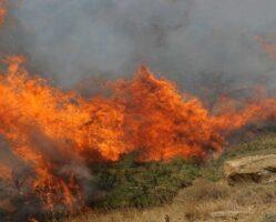Πολύ υψηλός κίνδυνος πυρκαγιάς στην Π.Ε. Καβάλας
